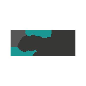 netzer precision